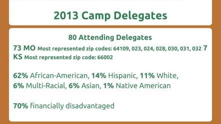 2013 delegate breakdown